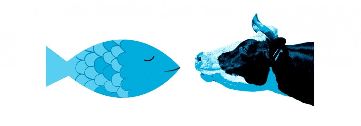 Illustration 2,5D, weder Fisch noch Fleisch
