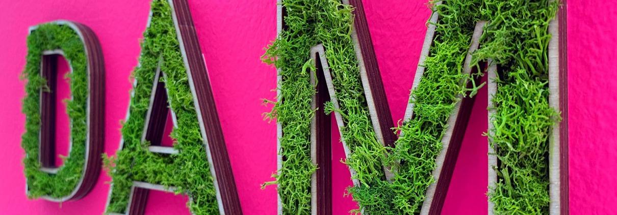 Foto: EINFACH GRÜN, Greening the city, Ausstellung im DAM Deutsches Architekturmuseum Frankfurt